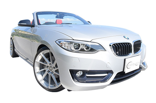 BMW-220i Silver